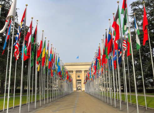 Entrance with flags Image