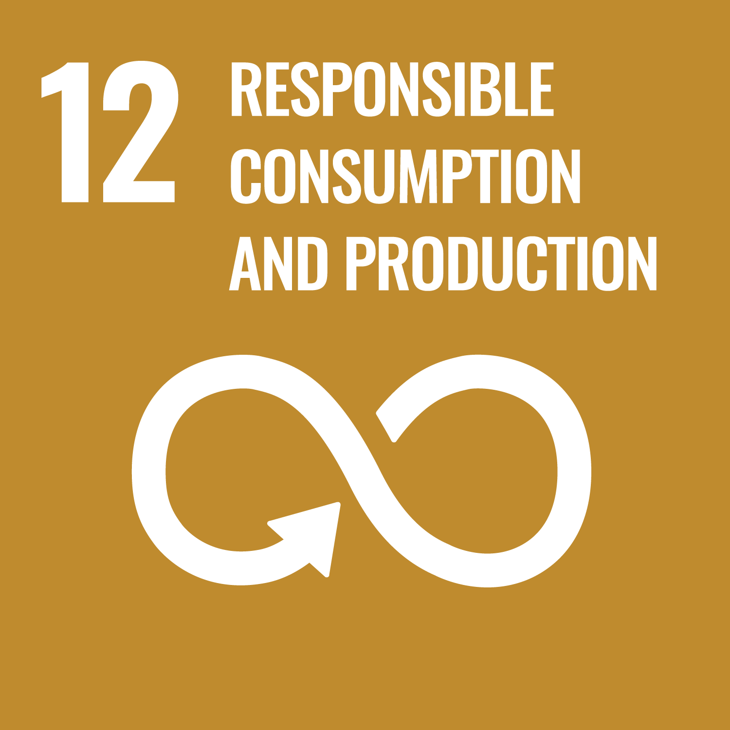 Responsible Consumption and Production Image
